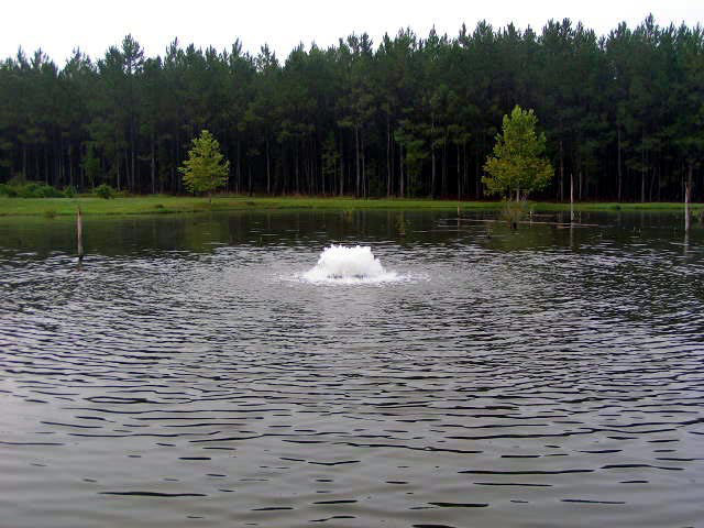 Examples of Pond Aerators in use: