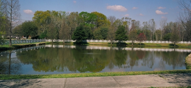 Find Your Pond Care System this Spring