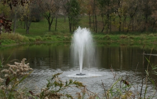 Combating Pond Aging